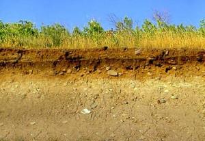 Геологические изыскания - Грунт