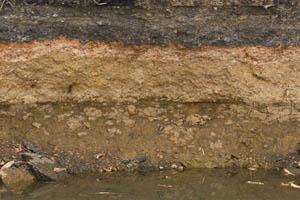 Учет силы морозного пучения грунта в проекте дома